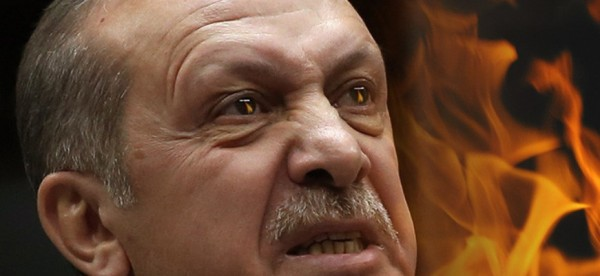 erdogan trellos